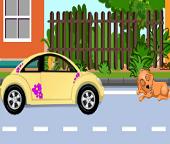 Несчастный случай со щенком