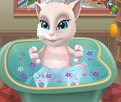 Ванна для дочки  кошки Анжелы