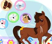 Тест: Узнайте, на какую Пони Вы похожи