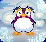В гостях у пингвина