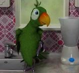 Говорящий попугай желает познакомиться