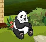Спасаемся от голодной Панды