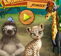 Салон красоты для животных в джунглях