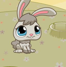 Помогите кролику охотиться на морковку