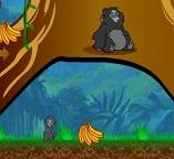Тарзан.  Обезьянка собирает бананы