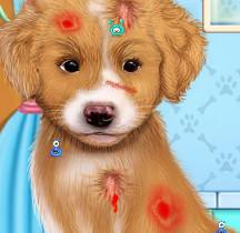 Доктор для щенка