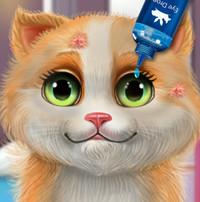 Больной котенок: лечение и уход