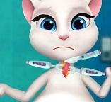 Беременная кошка Анжела. Опасная инфекция