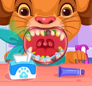 Элитная стоматологическая клиника для животных