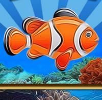 Свободу рыбке